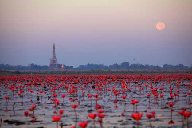 Thailand Visa Udon Thani Photo 3